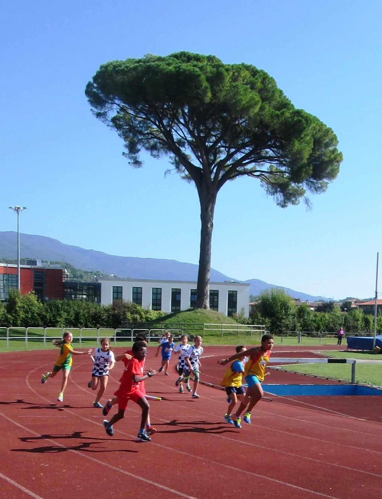 vittorio-veneto_la-pista-durante-una-gara-giovanile.jpg